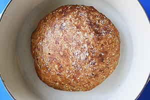 10 Grain No Knead Bread
