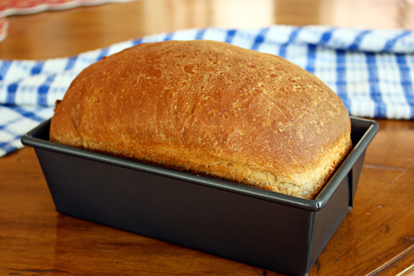 Simple Whole Wheat Bread - Jenny Can Cook