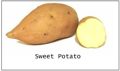 Sweet-Potato-or-Yam