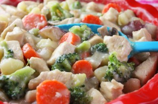 chicken_stew_2_600