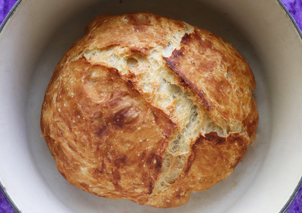 Fast No Knead Bread Faster Dutch Oven Bread Crusty Bread Jenny Can Cook Jenny Can Cook