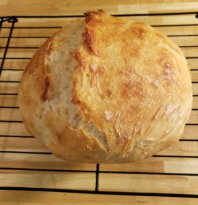 Jenny Can Cook No Knead Bread