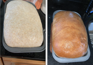 Simple Easy Wheat Bread