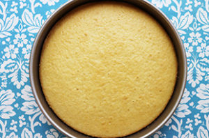 Simple Vanilla Cake (No Eggs - No Butter)
